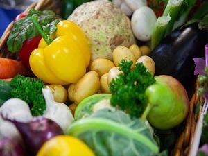 Gemüsekorb mit Frisches Gemüse