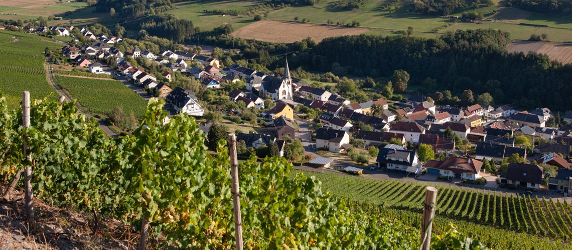 Weinort Ockfen