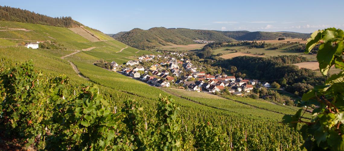 Ausblick auf dem Weinort Ockfen