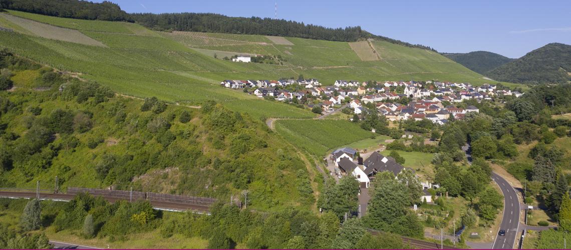 Luftbild Weinhotel Klostermühle